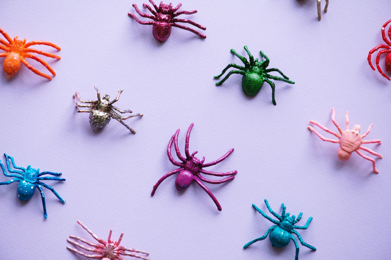 Reproduce Bugs